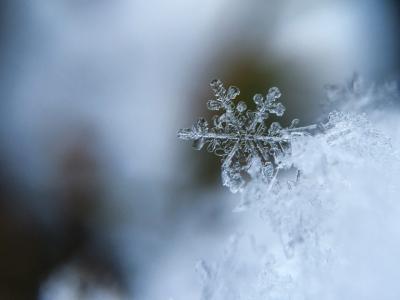 Slick Audio - snow and music