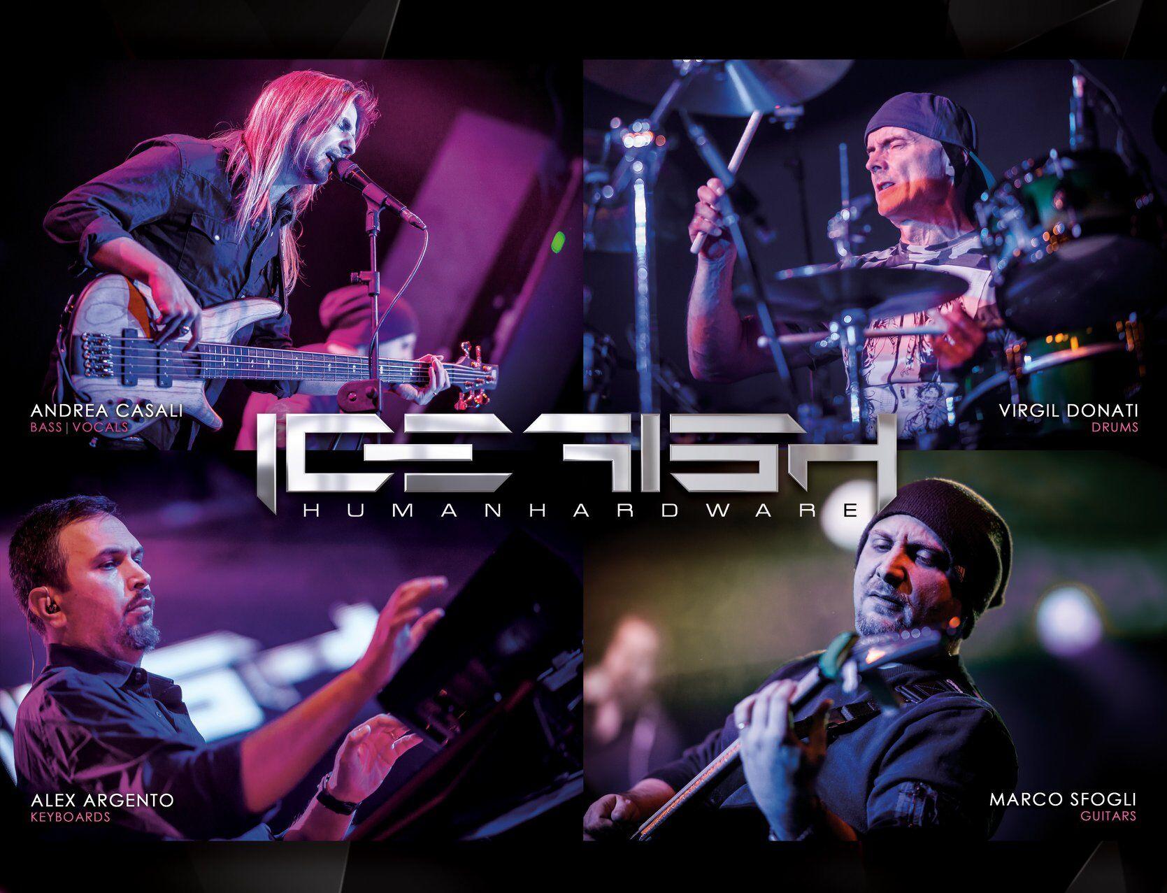 Icefish band image